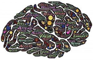 Je eigen brein slim beïnvloeden voor betere resultaten