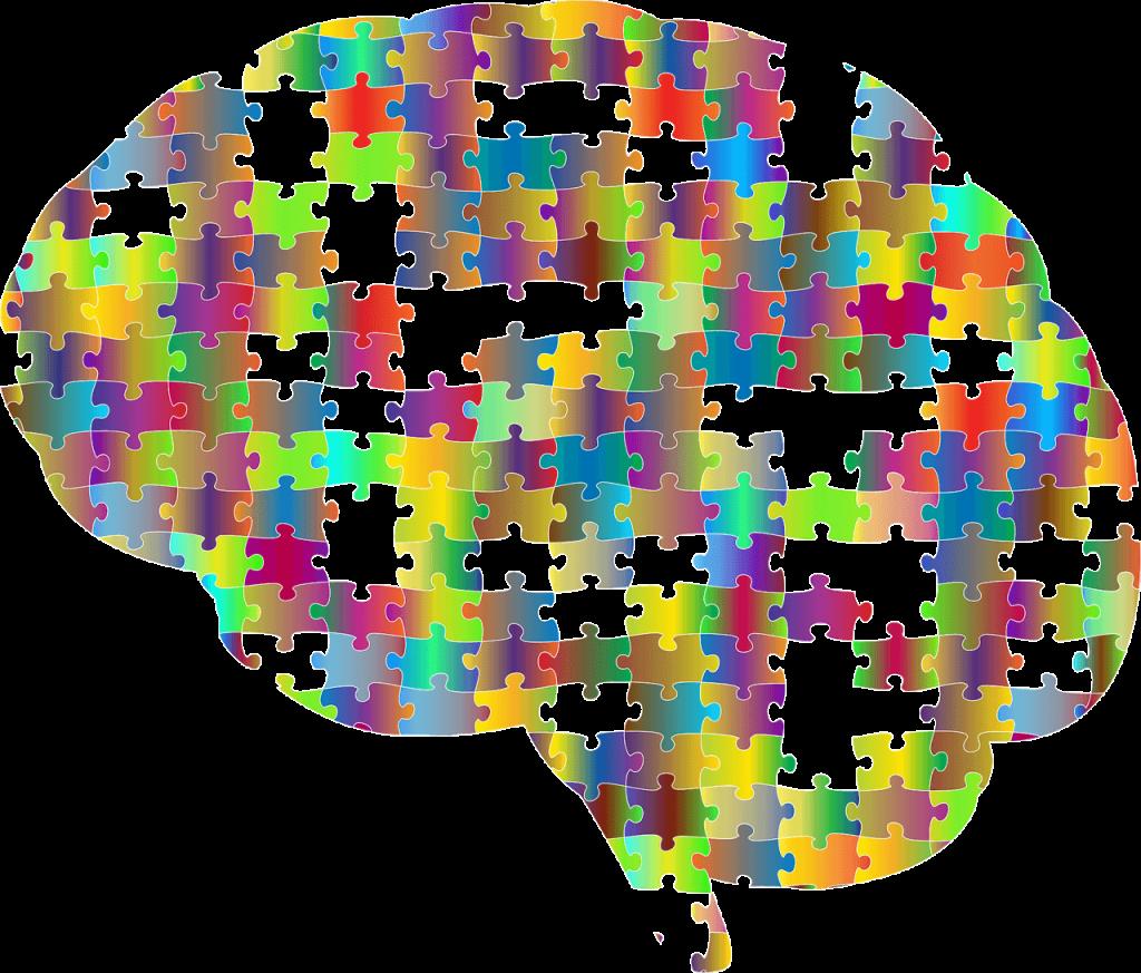brein-toekomst-mindset-powerinyou.nl