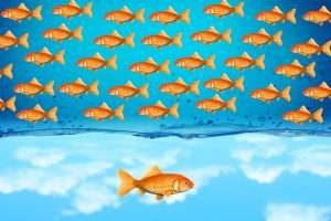 ondernemer-introvert-mindset-powerinyou